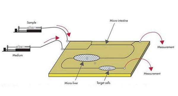 微流控芯片键合