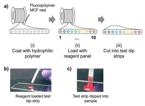 """多用途""""棒上实验室""""器件能进行多重细胞检测"""