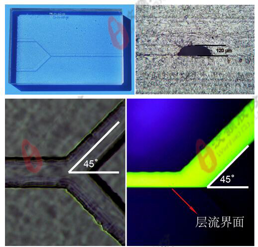 Glass Standard laminar flow microfluidic Chip channel