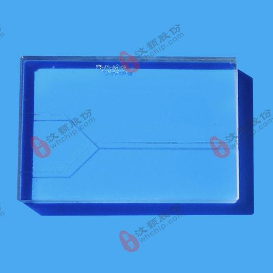 汶颢微流控芯片技术公司生产的芯片