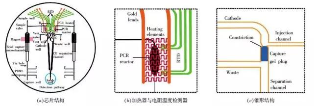DNA芯片-全集成芯片原理结构
