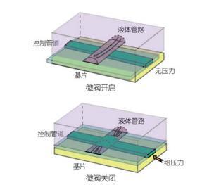 利用多层软蚀刻制备微流控压力可控阀门的示意图