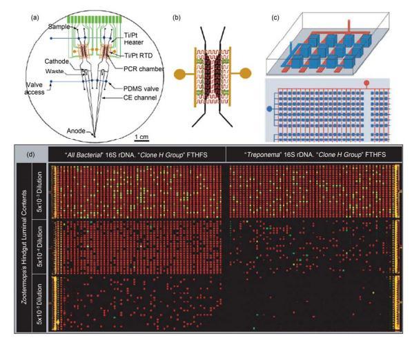 集成微流控芯片用于聚合酶链式反应(PCR)应用实例 (a) 多通道 RT-PCR-CE 芯片结构示意图, 在 1 块 100 mm 直径的芯片上集成有阻抗加热元件、加热电极引出条、Ti/Pt 感应温度传感器、PCR 反应腔室、电泳分离通道和 PDMS 气动微阀; (b) 反应腔室区域放大图[26]; (c) 数位式集成化 PCR 微流控芯片示意图, 深色, 反应微腔室; 浅色, 微阀; (d) 数位式集成 PCR 反应结果图