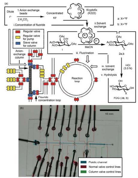 集成微流控芯片用于化学合成的研究 (a) 规模集成式芯片用于操控液体在芯片中合成 2-18 氟-2-脱氧葡萄糖芯片核心结构与过程示意图[39]; (b) 用于合成寡聚核苷酸分子的集成式 PFPE 微流控芯片实物图