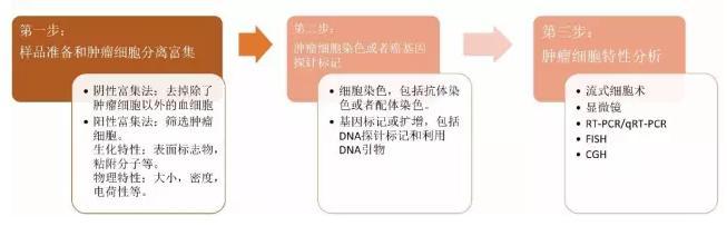 图4.CTC的检测流程图