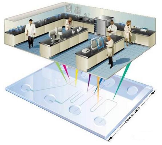 微流控芯片实验室示意图