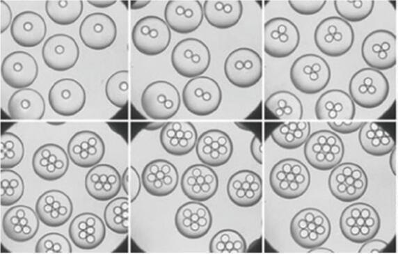 汶颢股份微流控液滴技术