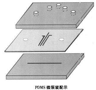 微流体PDMS芯片流体控制设备微泵装配示意图