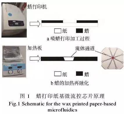 使用蜡打印加工纸基微流控芯片的方法,其基本原理见图1。
