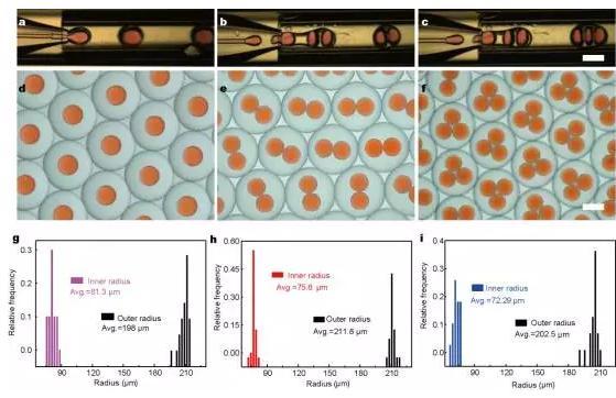 使用微流控装置得到不同尺寸和结构的微胶囊