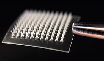 纳米颗粒微针贴片