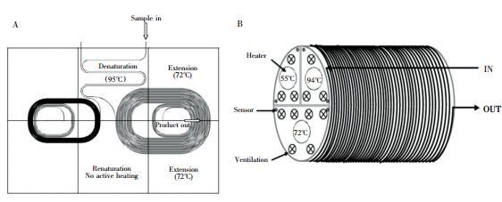 图3  螺旋通道型 PCR装置: ( A) 平面螺旋通道 PCR 装置,( B) 圆柱螺旋通道 PCR装置