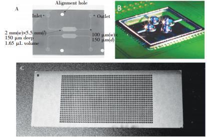 微池型 PCR芯片: (A) 单反应池 PCR芯片,(B) 液滴虚拟微池 PCR芯片, (C) 微池阵列 PCR芯片