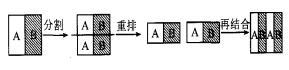 图 2  静态微混合器的混合原则