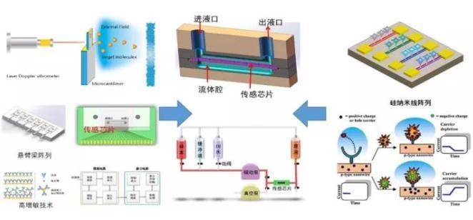 微纳机械结构生化传感器