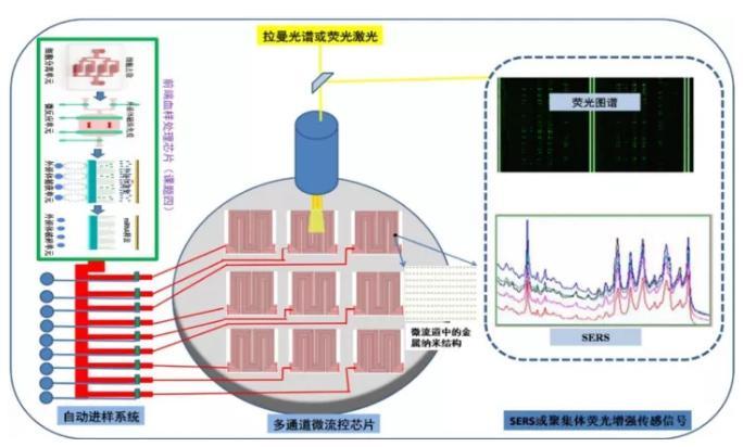 高增敏金属纳米结构材料与聚集体生化传感器研究
