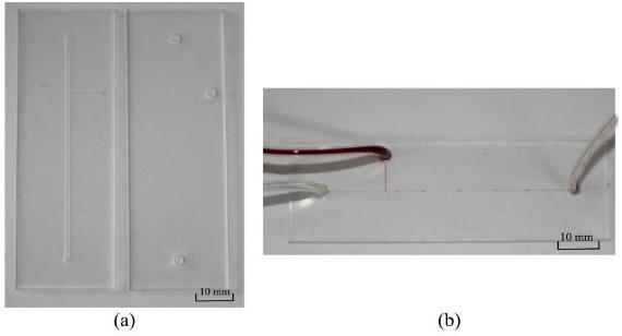 二氧化碳激光器加工完成的微流控芯片(PMMA材质,液滴产生器)