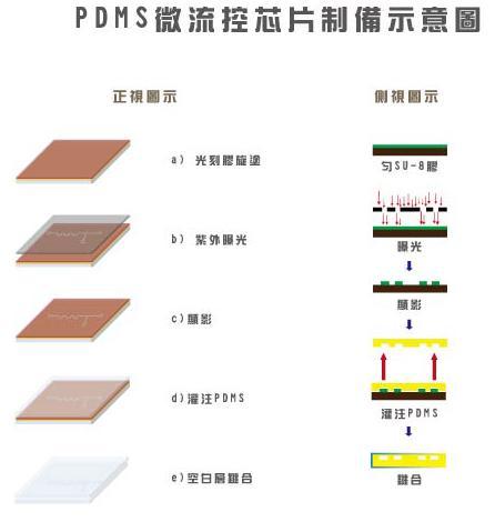 PDMS芯片微结构制备工艺