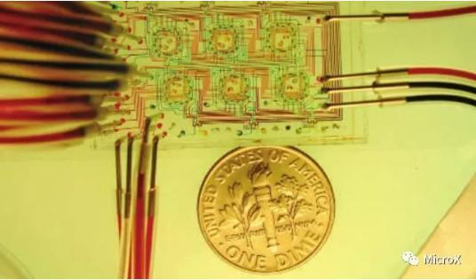 培养微生物的微恒化器