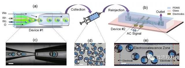 哈工大在微流控纳升级微反应器研究领域取得新进展
