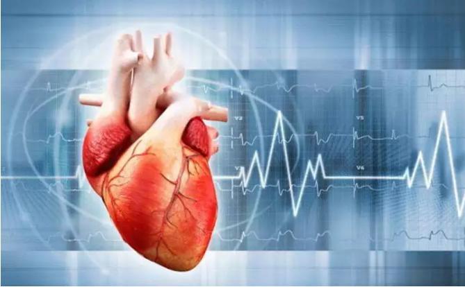 3D打印在心血管构建方面的应用