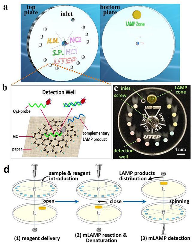 小小可旋转CD生物芯片实现多种传染性疾病的及时定量诊断