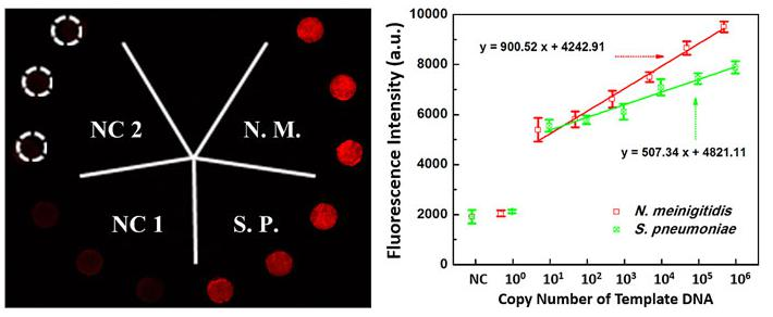 微流控生物芯片在医疗诊断应用