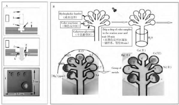 图 3 重金属检测微流控芯片系统