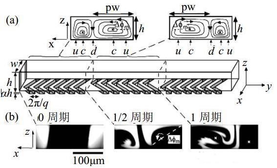 图6交错排列人字形凹槽微混合器