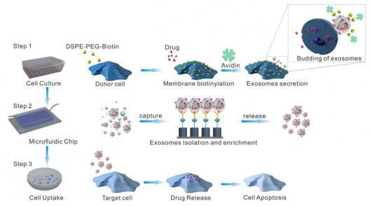 三维纳米结构微流控芯片