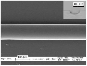 图5 PDMS微凹槽的SEM 照片与截面的显微照片