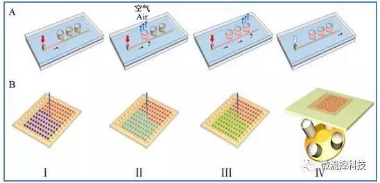 微流控组织阵列芯片上药物组合筛选流程示意图