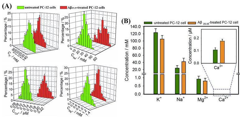 图3. (A)Aβ25-35刺激前后Na+、K+、Ca2+、Mg2+浓度变化的正态分布图;(B)Aβ25-35刺激前后Na+、K+、Ca2+、Mg2+浓度变化的柱状图
