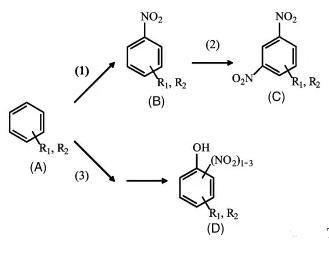 图3主反应和副反应步骤