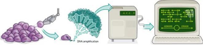 单细胞测序技术的流程