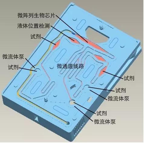图3 理邦m16微流控测试卡结构