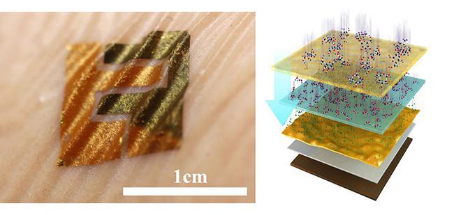类皮肤生物传感器及结构示意图