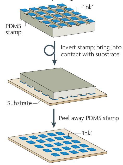 图 5 微接触印刷技术的过程