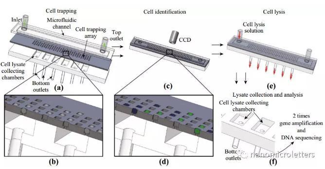 微流控芯片原理及其操作图