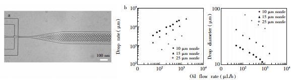 图4 液滴产生过程中的稳定性