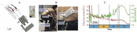 图 1 检测血糖和乳酸的可穿戴式微流控芯片检测系统