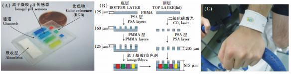 图 2 可穿戴式汗液pH值检测微流控系统