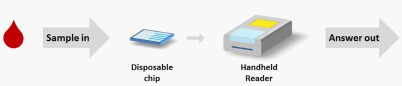 基于微流控技术提供了一个快速,便宜,定量和准确测试的平台