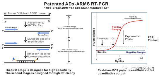人类EGFR基因普通便检测试剂盒(多重荧光PCR法)