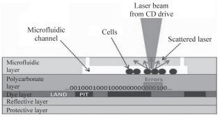 图4微流控芯片细胞计数研究