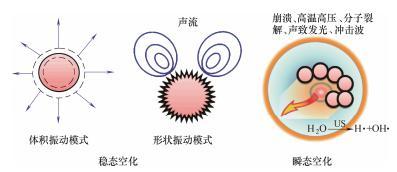 图2单个气泡的声空化行为