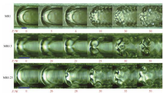 图9超声作用下微通道内弹状气泡运动行为(标尺250μm)