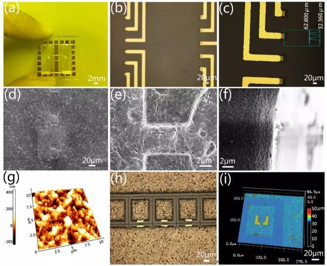 微流控芯片的实物图