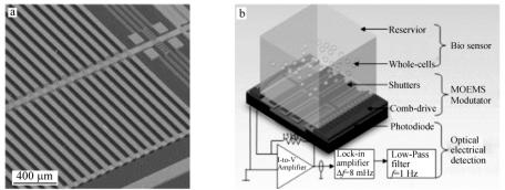 图2整合的微光电机械系统(MOEMS)(a)和细胞传感生物传感芯片实验室系统(b)