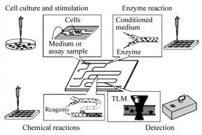 图5基于微芯片的生物分析系统